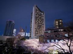东京 全日空洲际饭店