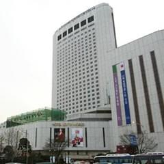 首尔 乐天世界酒店