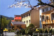 Alishan Guo Hotel